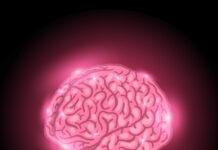 Colpocefalia