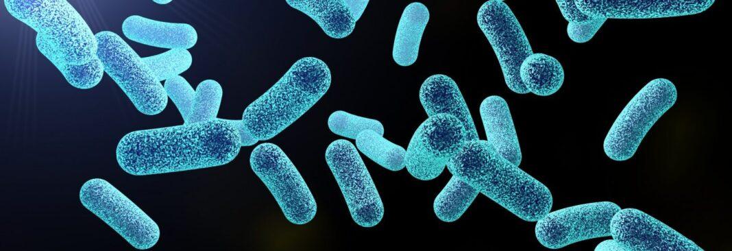 Enzima diseñada por computadora puede ayudar a matar pseudomonas aeruginosa en biopelículas