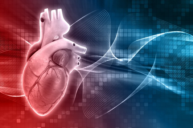 Uso compasivo: Lomecel-B aprobado para el síndrome del corazón izquierdo hipoplásico