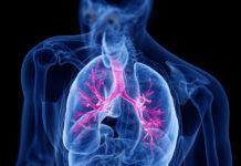 Los ácidos grasos bacterianos pueden desempeñar un papel en las exacerbaciones de niños con fibrosis quística
