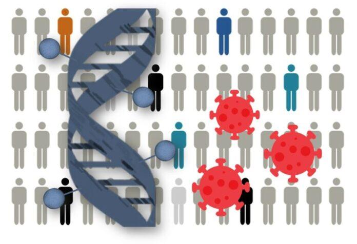 Encuentran perfiles epigenéticos relacionados con la gravedad de COVID-19