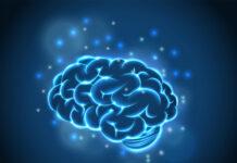 Takeda compra derechos globales a Soticlestat para trastornos epilépticos raros