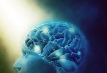Primer paciente recibió en ensayo clínico de fase 1 para tumores cerebrales leptomeníngeos
