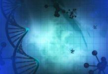 Un nuevo estudio determina que la terapia contra la fibrosis quística es segura y eficaz para los niños pequeños