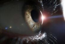 Una terapia optogenética recupera parcialmente la vision de una persona ciega