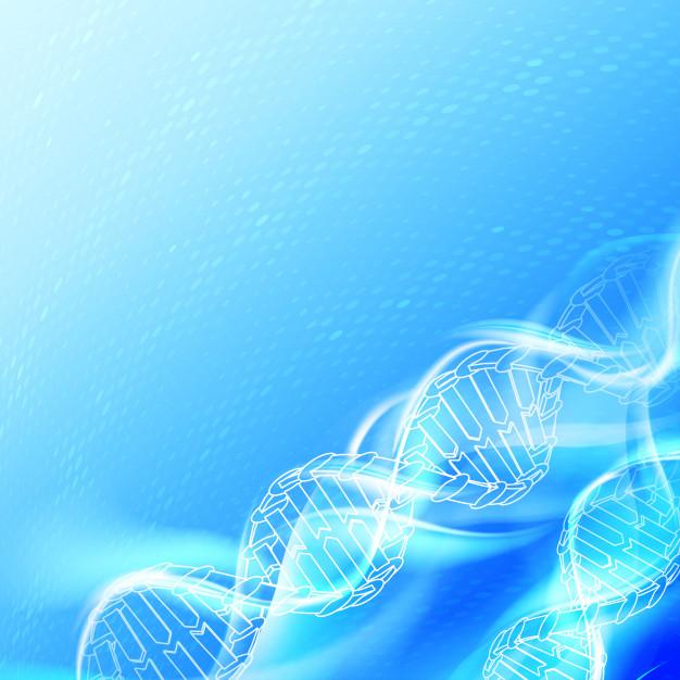 Las mutaciones del gen TP73 pueden aumentar el riesgo de padecer esclerosis lateral amiotrófica