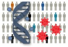 Identificadas 13 regiones del genoma relacionadas con la susceptibilidad a COVID-19 o la gravedad de la enfermedad