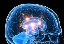 Reducen más del 30% el volumen de un glioblastoma en base a un casco que genera un campo magnético oscilante