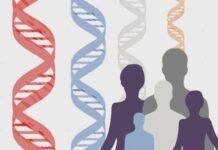 Un genoma humano, dos secuencias de referencia
