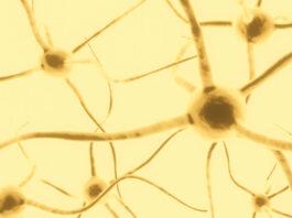 La ketamina gana el estatus de fármaco huérfano para la esclerosis lateral amitrófica