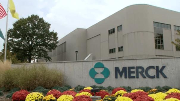 Welireg de Merck se convierte en el primer fármaco para los tumores de von Hippel-Lindau raros en EE.UU.