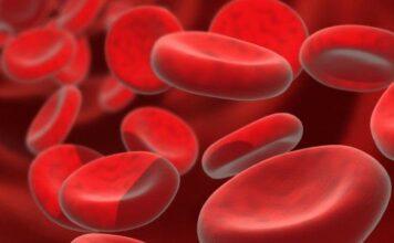 Asociación civil de pacientes con hemoglobinuria paroxistica nocturna
