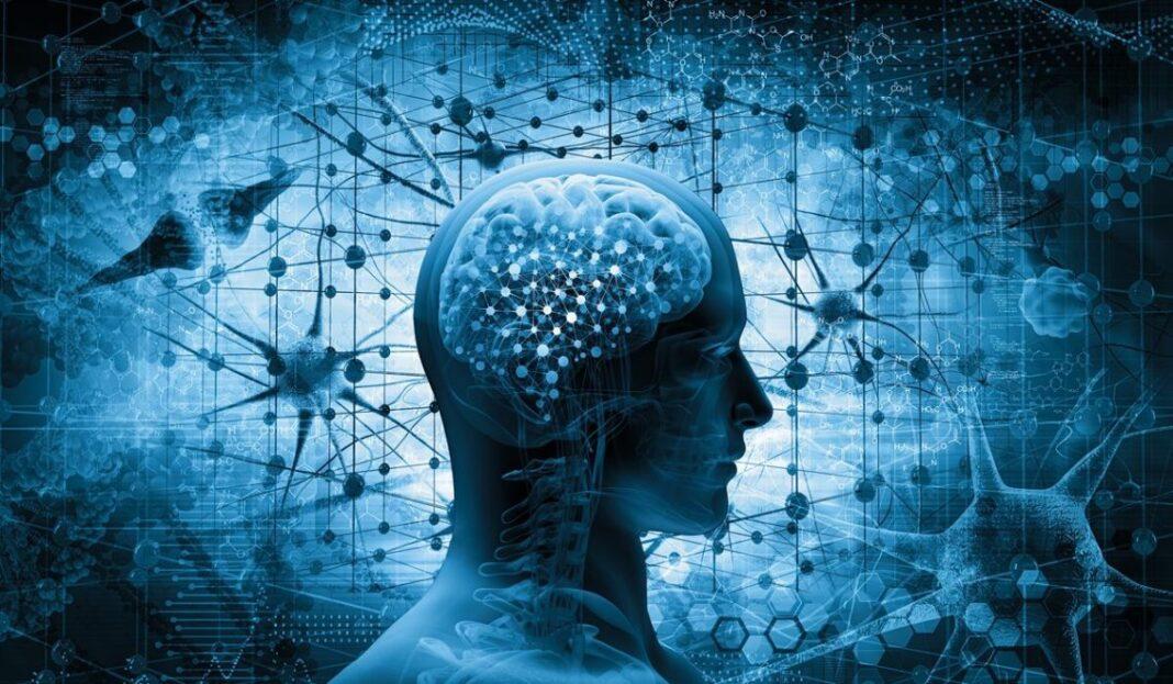 La clasificación molecular de los meningiomas abre un camino hacia el mejor tratamiento de los pacientes