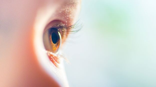 Los fundadores de Spark lanzan Opus Genetics para abordar formas raras de ceguera