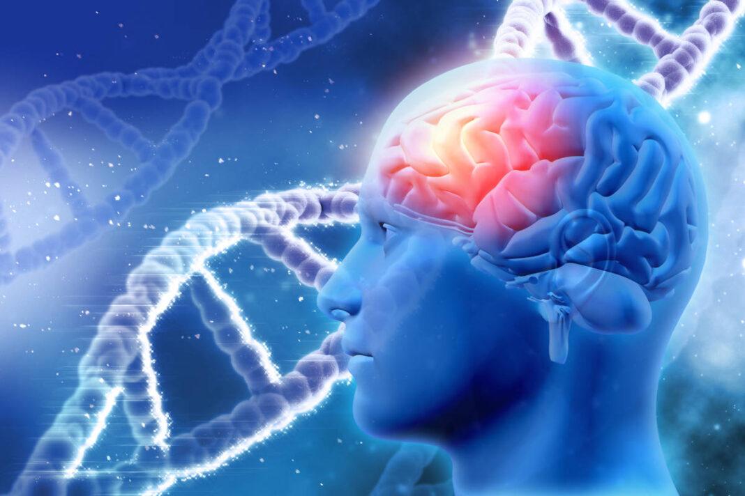 Síndrome de Joubert: incidencia y descripción clinicorradiológica de una serie genotipada de siete casos
